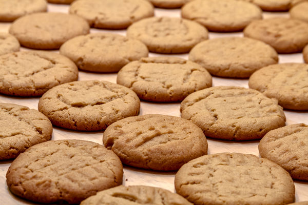 Ambalat biscuiti in Germania in fabrica, 1500-1700 euro