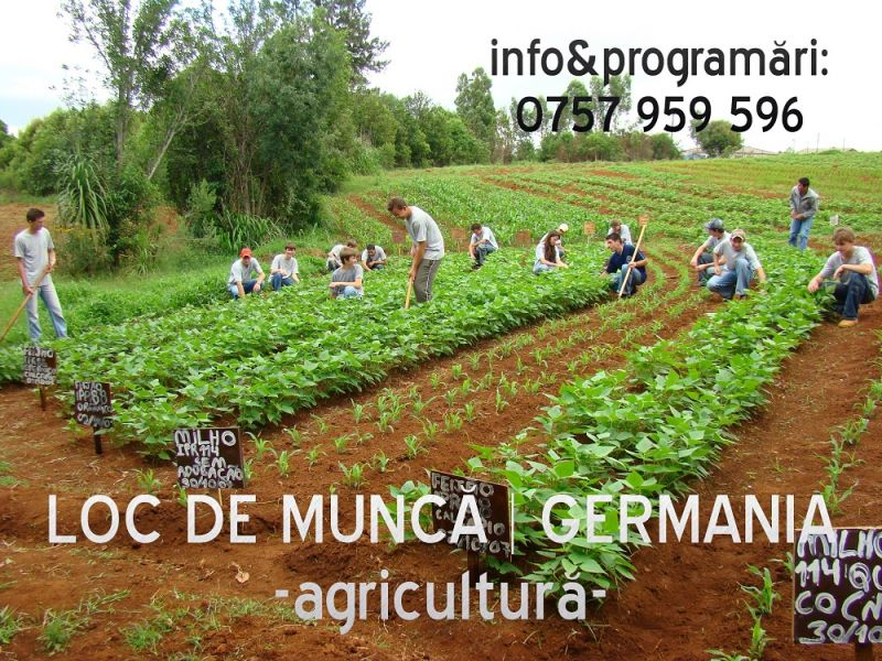 Angajari germania in agricultura