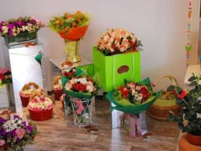Florist/florista in Kassel-Germania 1400eur