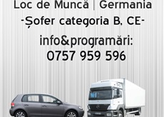 Soferi germania