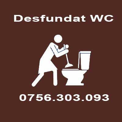 Instalator wc infundat